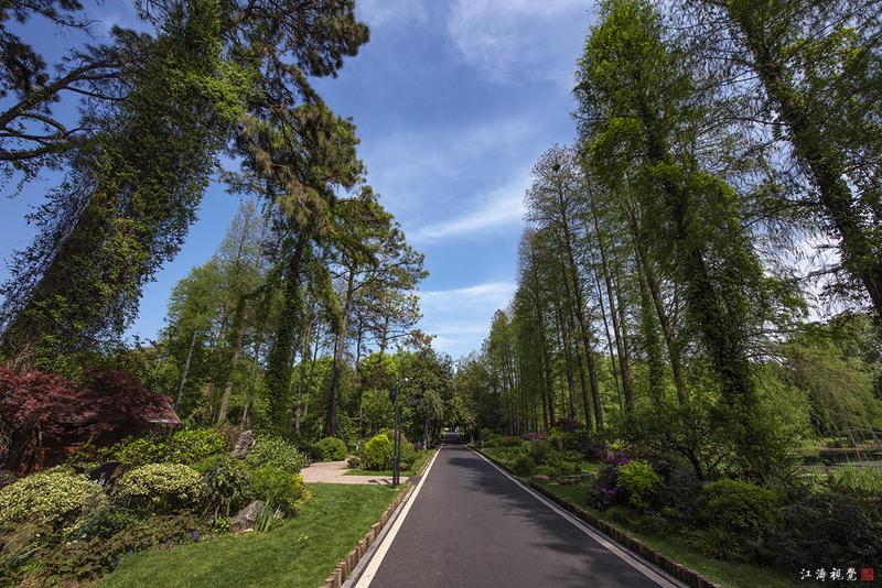 作为国家AAAA级旅游景区的武汉植物园,它的全称是中国科学院武汉植物园。官方说法里,武汉植物园是中国三大核心科学植物园之一,也是集科学研究、物种保护,以及科普教育这一体的综合研究机构。而在我们的通俗认知里,这是一个将好看、好玩、有趣、以及知识性完美溶合在一起的公园。