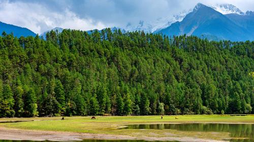 西藏公布首批自治區級康養旅游和綠色旅游示范基地試點名單