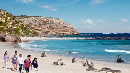 南澳-巴罗莎谷-塔斯马尼亚州-墨尔本15日游