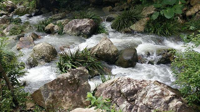 <泉州永春云河谷风景区>云河谷景区集奇、险、雄、秀、野、幽于一体,快来云河谷和我一起体验吧