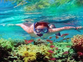 <海南-三亚百福湾深潜1日游>三亚隐秘地百福岛,醉美潜水胜地,玻璃船航拍+小众人少+水质清澈+一对一教练