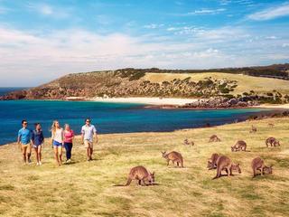 <南澳州阿德莱德+袋鼠岛一天游游>纯玩无购物,2人成团,每周三、四、六为中文团,其他团期为英文团,下单后24小时确认(当地参团)