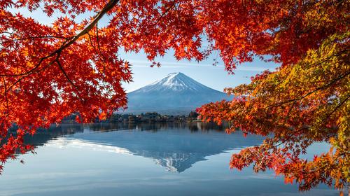 初识日本6日游