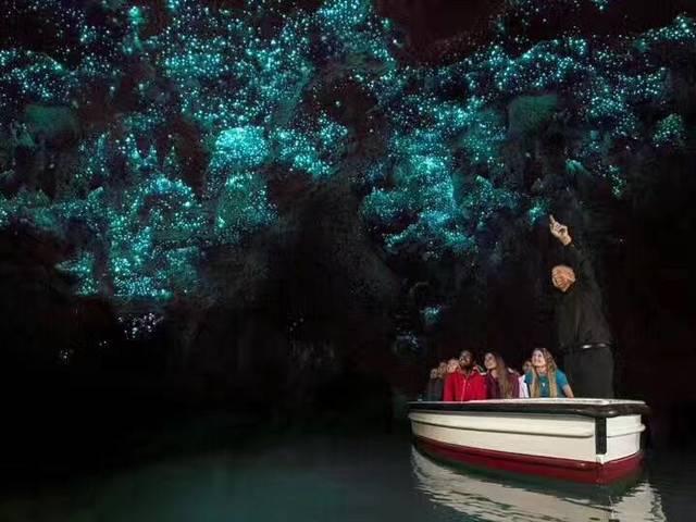 <新西兰北岛霍比屯-怀托摩-怀奥塔普-汉密尔顿3日游>全程湖畔四星酒店/罗托鲁瓦山顶缆车含午餐/波利尼西亚温泉/霍比屯/怀托摩萤火虫洞/怀欧塔普地热公园(当地参团)